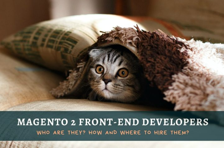 Magento 2 Front-end Developers In 2020: Who Are They, How and Where to Hire Them